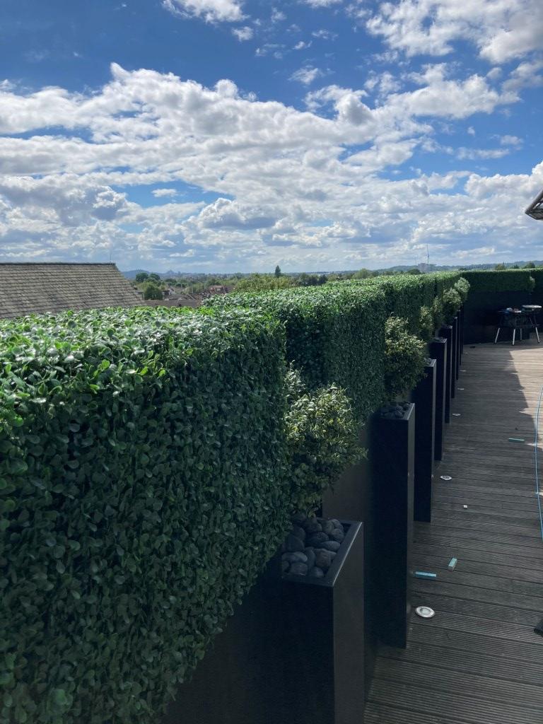 Hedge Box